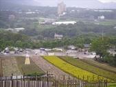 20070826~大溪花海:1464862160.jpg