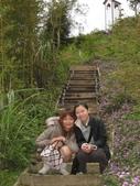 新竹薰衣草森林:029