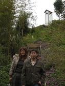 新竹薰衣草森林:030