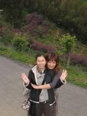 新竹薰衣草森林:047