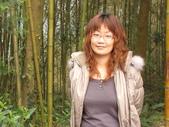 新竹薰衣草森林:022