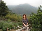 新竹薰衣草森林:042