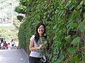 部門旅遊~泰安^^:PA280391