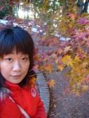 20071208_09~武陵賞楓:1363378052.jpg