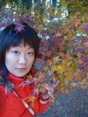 20071208_09~武陵賞楓:1363378053.jpg