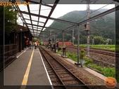 201209京阪夏疏水_2:R0191335.jpg