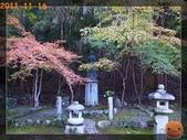2011日本京阪10日_4:R0180850.jpg