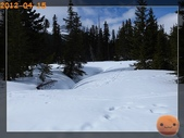 20120413_加拿大10日遊:R0187357.jpg