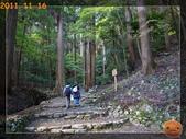 2011日本京阪10日_4:R0180853.jpg