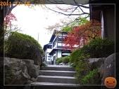 2011日本京阪10日_5:R0181392.jpg
