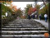 2011日本京阪10日_5:R0181393.jpg