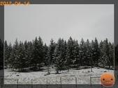 20120413_加拿大10日遊:P4146557.jpg
