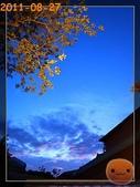 20110827台北看展:R0165464.jpg