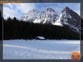 20120413_加拿大10日遊:R0187532.jpg
