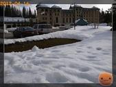 20120413_加拿大10日遊:R0187538.jpg