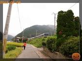 201209京阪夏疏水_2:R0191328.jpg