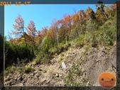 20111217_霞喀羅古道:R0182985.jpg