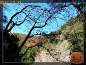 20111217_霞喀羅古道:R0182994.jpg
