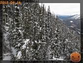20120413_加拿大10日遊:R0187638.jpg