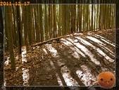 20111217_霞喀羅古道:R0183010.jpg