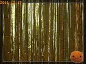 20111217_霞喀羅古道:R0183013.jpg