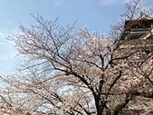 行動相簿:2014-03-25 185808.JPG