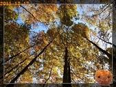 20111217_霞喀羅古道:R0183025.jpg
