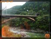 201209京阪夏疏水_2:R0191355.jpg