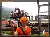 201209京阪夏疏水_2:R0191332.jpg