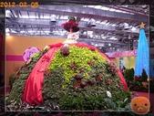 20120205_花現台北與國際書展:R0184605.jpg