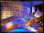 20120114_奇幻仿生獸特展:R0183932.jpg