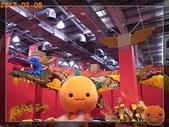 20120205_花現台北與國際書展:R0184607.jpg