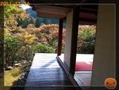 2011日本京阪10日_4:R0180833.jpg