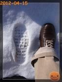 20120413_加拿大10日遊:R0187215.jpg
