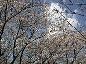 行動相簿:2014-03-27 170001.JPG