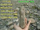 石頭的家 狗狗篇:DSC04159-1.JPG
