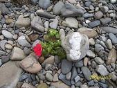 石頭的家 狗狗篇:100_1728.jpg