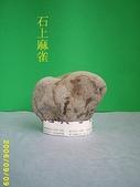 動感石   A:石上黃雀
