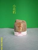 動感石   A:小花豹