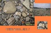 石頭的家 狗狗篇:IMG_4357-1.JPG