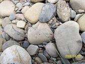 石頭的家  猴子篇:100_2391.jpg