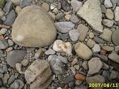 石頭的家 狗狗篇:IMG_4357.JPG