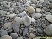 石頭的家  貓咪 鳥兒 :IMG_1202.JPG