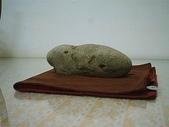 石頭的家 狗狗篇:IM001814.JPG