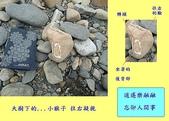 石頭的家 狗狗篇:DSC04321-1.JPG