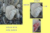 石頭的家  猴子篇:1202911693.jpg