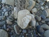 石頭的家  猴子篇:1202911695.jpg