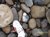 石頭的家 狗狗篇:100_3486.jpg