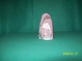 石頭的家  猴子篇:1202918197.jpg