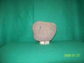 石頭的家  猴子篇:1202918199.jpg